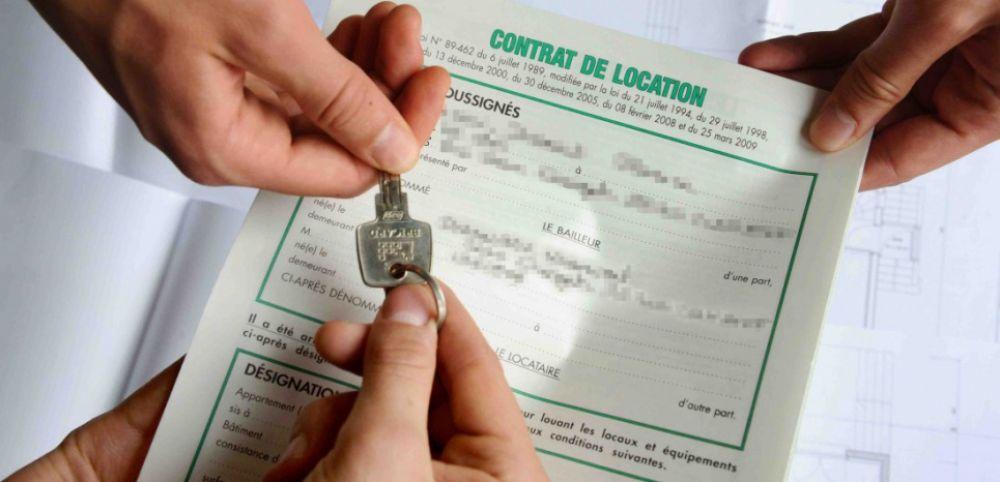 contrat de location immo